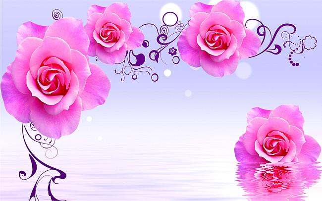 Розы в отражении