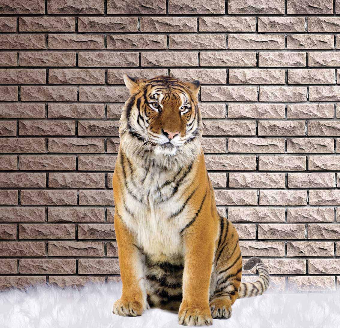 Животные - 4 | Wall-Style
