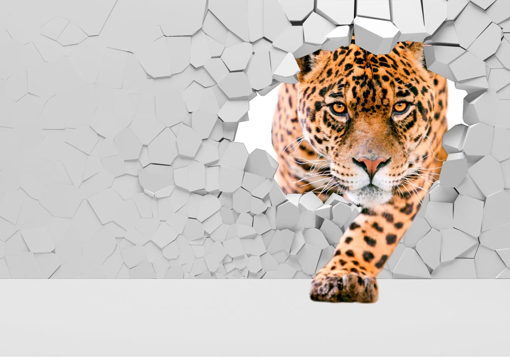 Животные - 1 | Wall-Style