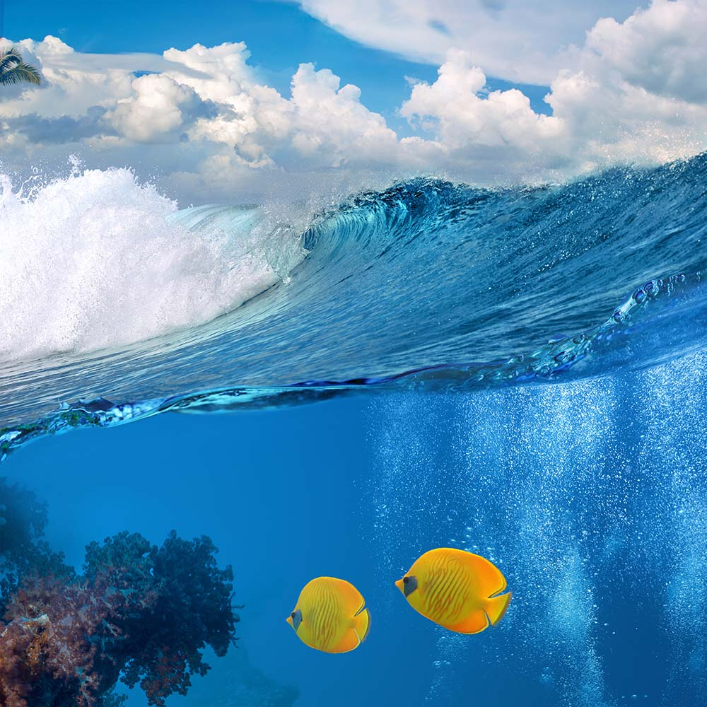 Море - 12 | Wall-Style