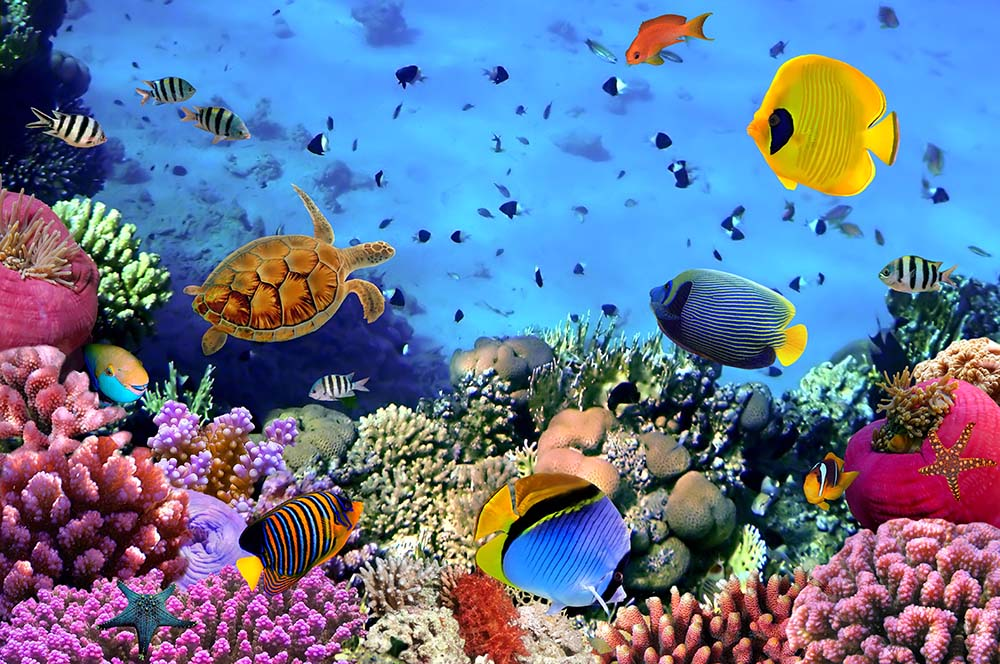 Море - 10 | Wall-Style