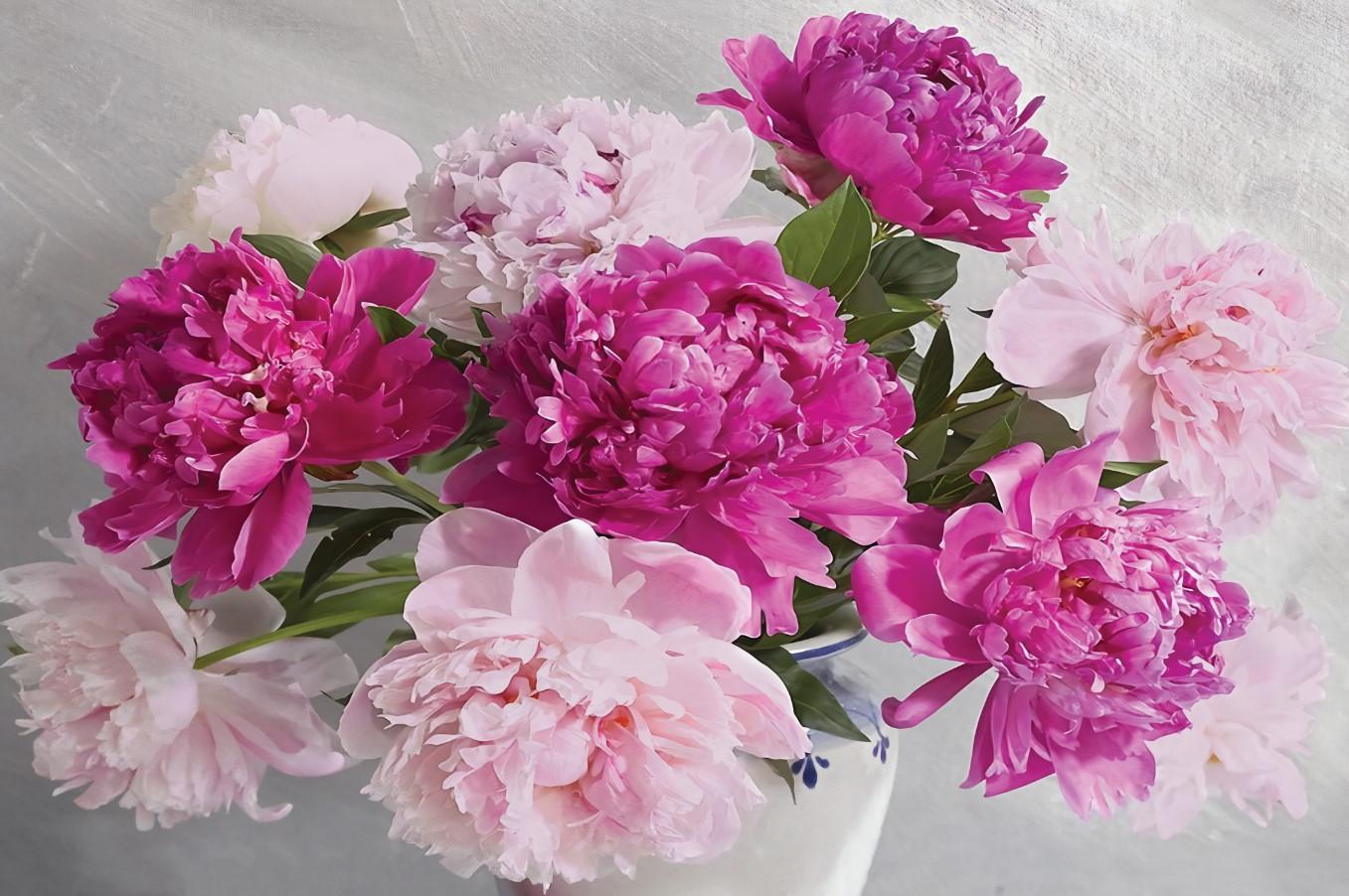 Цветы и растения - 1 | Wall-Style