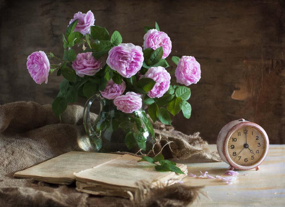 Цветы и растения - 20   Wall-Style