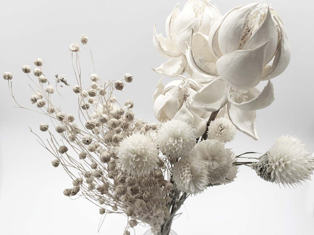 Цветы и растения - 18   Wall-Style