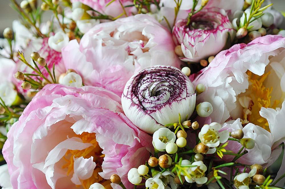 Цветы и растения - 21   Wall-Style