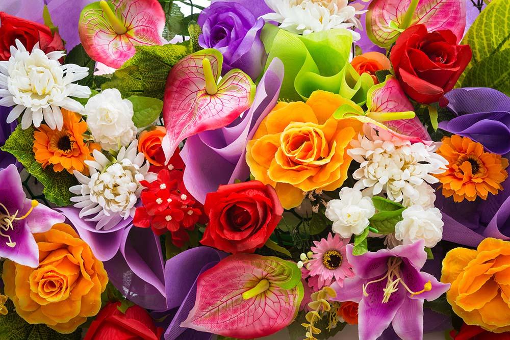 Цветы и растения - 23   Wall-Style
