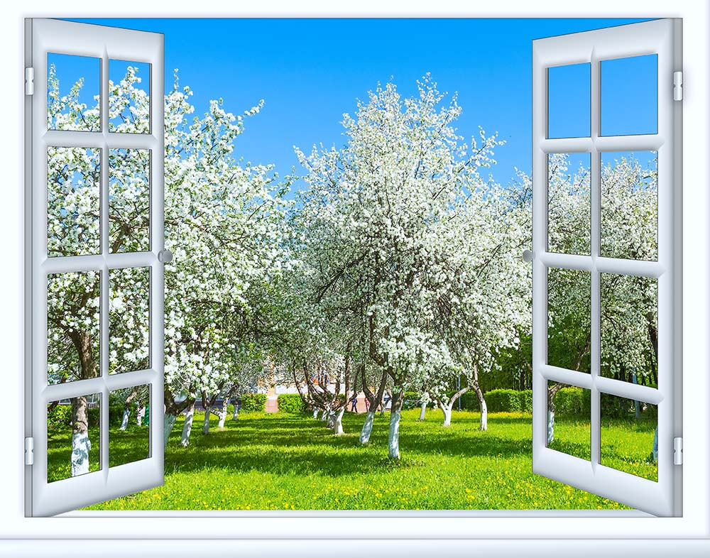 Вид из окна - 24 | Wall-Style