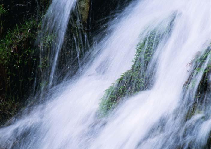 Водопад и трава