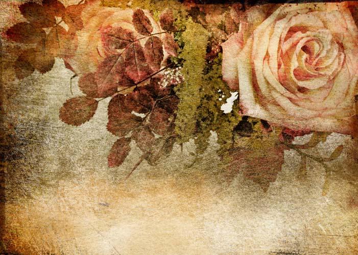 Цветы и растения - 219 | Wall-Style