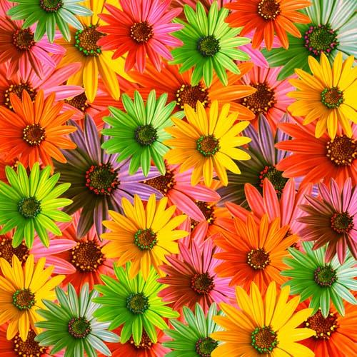 3D цветы