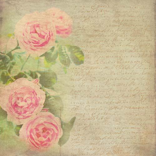 Цветы и растения - 170 | Wall-Style
