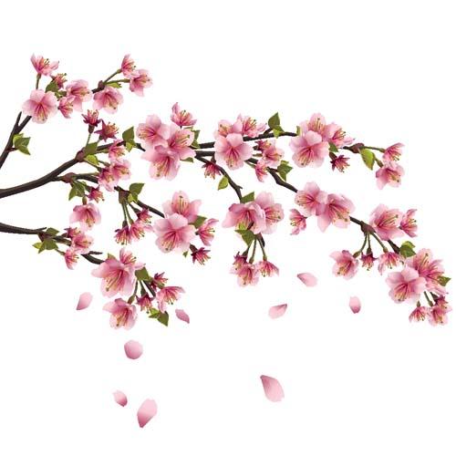 Цветы и растения - 195 | Wall-Style