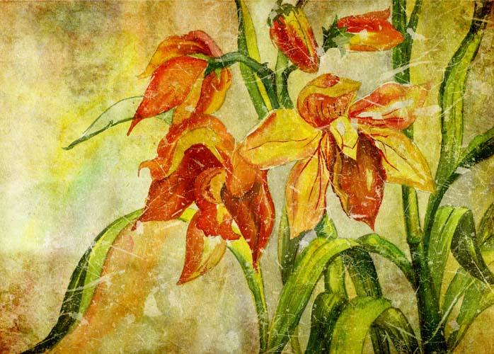 Цветы и растения - 216 | Wall-Style