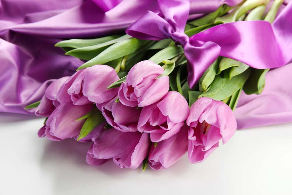 Лиловые тюльпаны