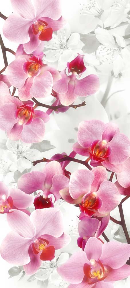 Цветы и растения - 47 | Wall-Style