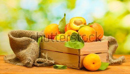 Еда и напитки - 6 | Wall-Style