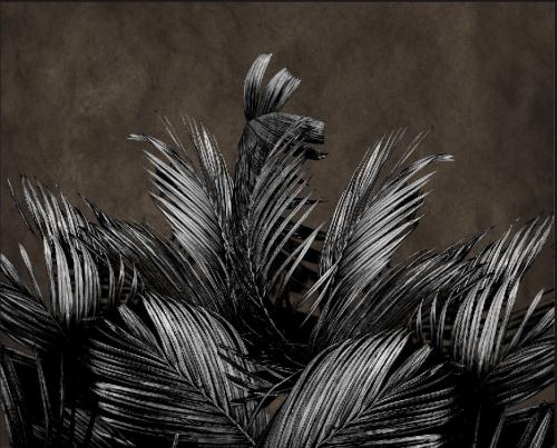Каталог Картина серые листья: Листья   Wall-Style