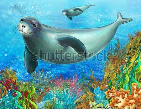 Каталог Фотообои морские котики:    Wall-Style