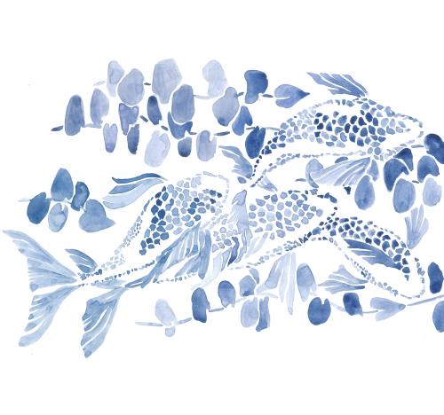 Каталог Картина рыбки акварелью: Детские | Wall-Style