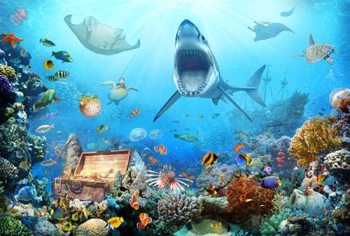 Каталог Фотообои акула в море:  | Wall-Style