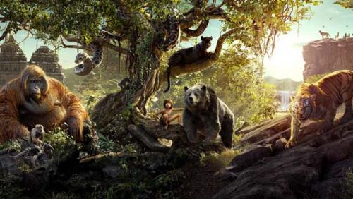 Каталог Картина книга джунглей: Детские | Wall-Style