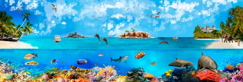 Каталог Фотообои подводный мир в тропиках:  | Wall-Style