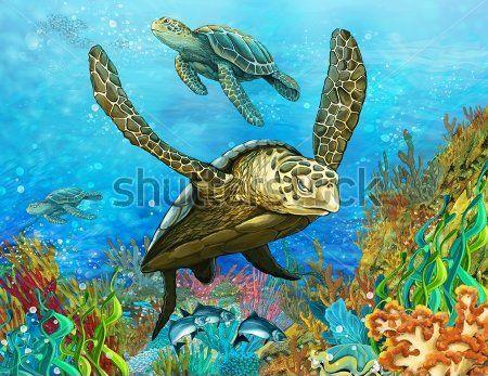 Каталог Фотообои черепахи:  | Wall-Style