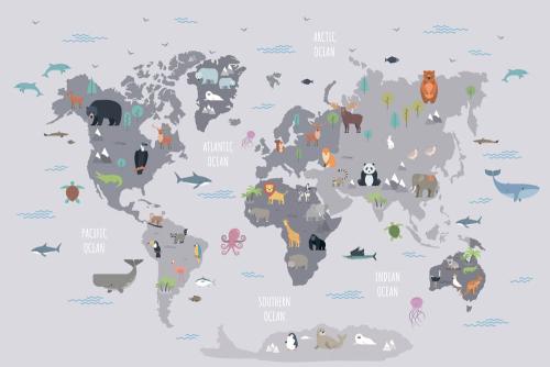 Каталог Картина карта для изучения животных: Детские   Wall-Style
